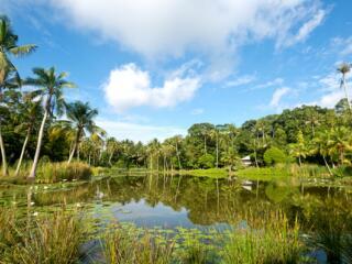 Pulau Ubin Cycling Excursion