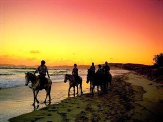 Breakfree Rainbow Shores Horseriding