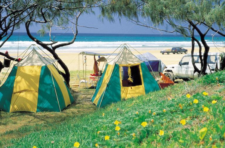 Dog Friendly Camping Queensland Australia