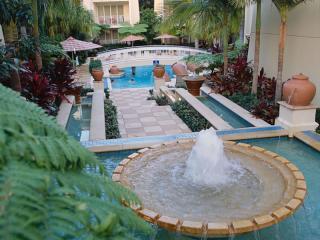 Fountain & Swimming Pool