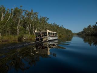 Noosa Everglades Tour