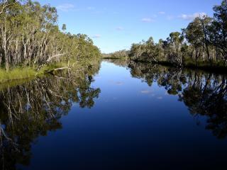 Noosa Everglades Eco Cruise