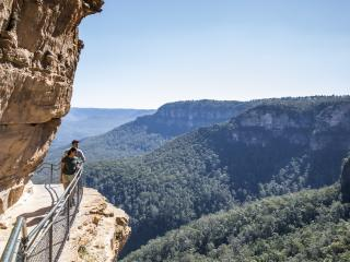 Wentworth Falls Track Blue Mountains Destination NSW