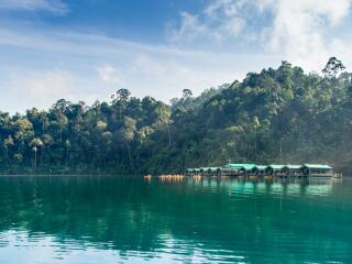 Rainforest Camp