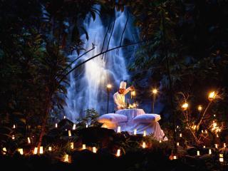 Waterfall Dinner