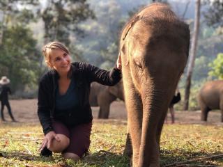 Elephant Sanctuary Chiang Mai 2