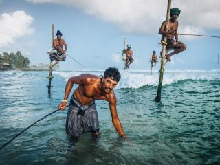 Stilt Fisherman Galle.jpeg