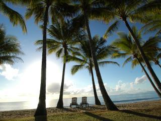 Beachfront at Palm Cove