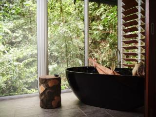 Rainforest Banyan