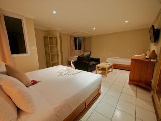 Deluxe Family Room - Bedroom