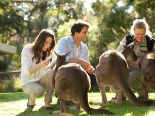 Wine & Wildlife Experience