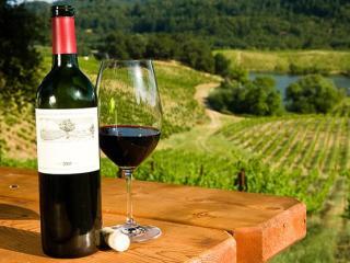 Mornington Peninsula Wine Tour