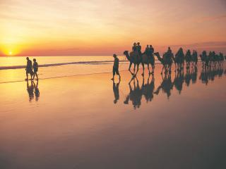 Camel trek on Cable Beach - Tourism Western Australia