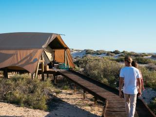 Boardwalk to Tent
